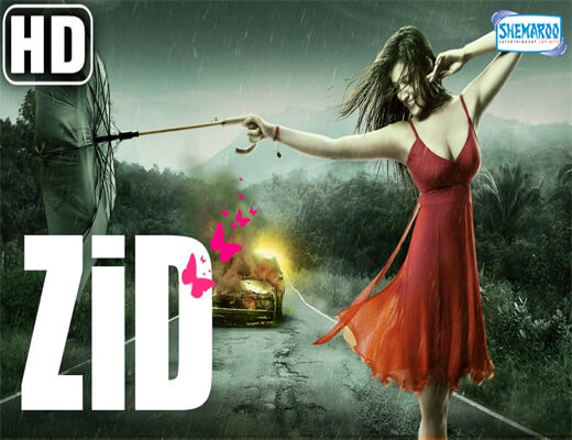 Zid-Title-Song---Zid---Lyrics-In-Hindi