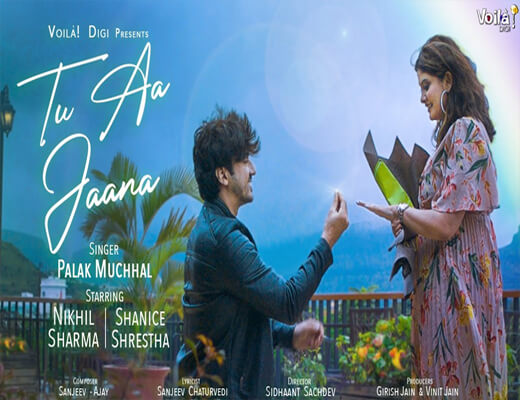 Tu-Aa-Jaana---Palak-Muchhal---Lyrics-In-Hindi