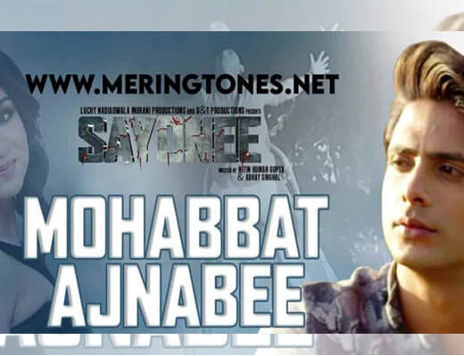 Mohabbat Ajnabee – Sayonee - Lyrics in Hindi