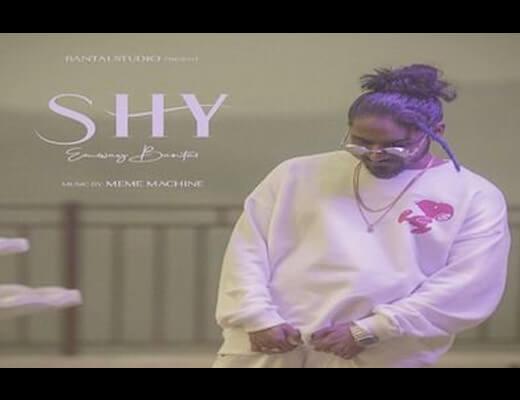 Shy Hindi Lyrics – Emiway