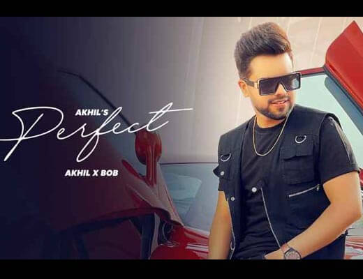 Perfect Hindi Lyrics – Akhil