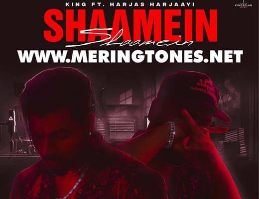 Shaamein Hindi Lyrics – King, Harjas