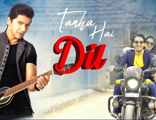 Tanha Hai Dil Hindi Lyrics – Shaan