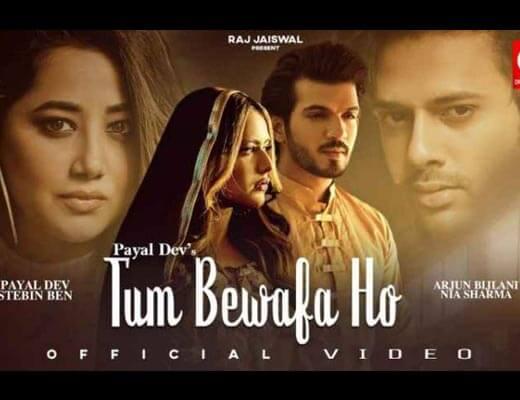 Tum Bewafa Ho Hindi Lyrics – Stebin Ben, Payal Dev