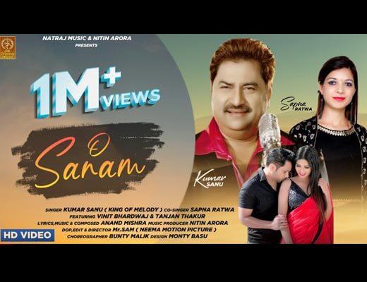 O Sanam Hindi Lyrics – Kumar Sanu, Sapna Ratwa