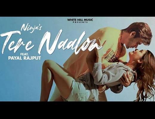 Tere Naalon Hindi Lyrics – Ninja