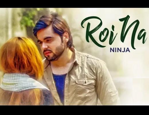 Royi Na Song Hindi Lyrics - Ninja