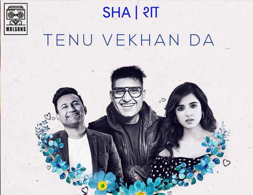 Tenu Vekhan Da Hindi Lyrics – Shashwat Sachdev