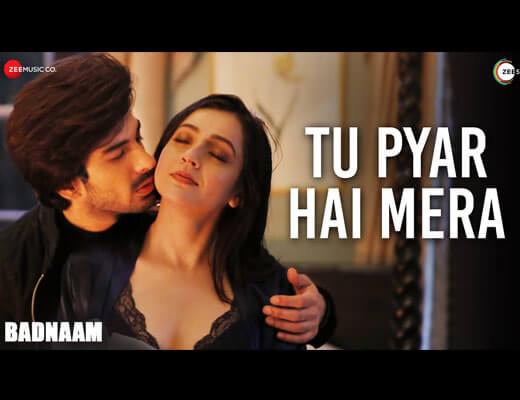 Tu Pyar Hai Mera Hindi Lyrics – Yasser Desai